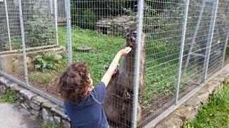 Zoo al Maglio-Neggio>