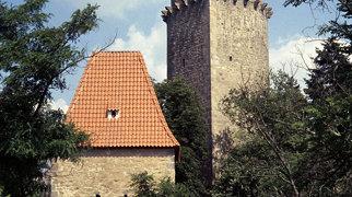 Zvíkov Castle>