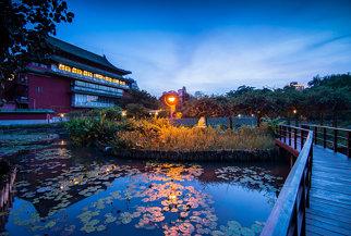 台北植物園 (Taipei Botanical Garden, Taiwan)