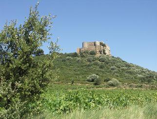 44- Château St Martin de Toques - près Gaussan -44
