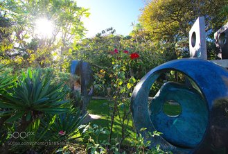 An Artist's Garden