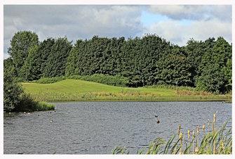 landscape cumbernauld