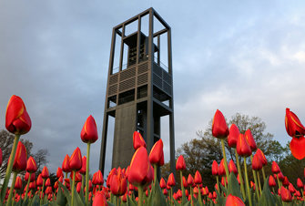 Netherlands Carillon, Worms-Eye View