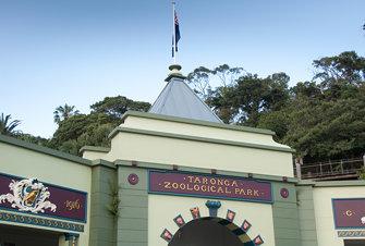 Visiting the Taronga Zoo