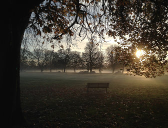 Misty Ealing Common