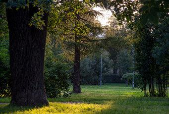 Vyazemsky Garden