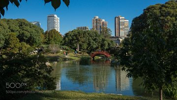 Japanic garden in Buenos Aires
