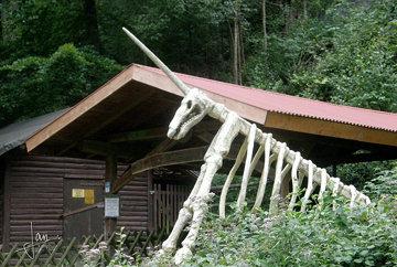 Scharzfeld, Herzberg am Harz - Einhornhöhle