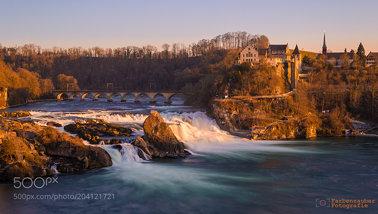 Rheinfall im goldenen Sonnenlicht