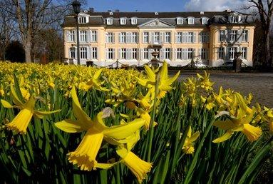 Frühlin bei Schloß Morsbroich