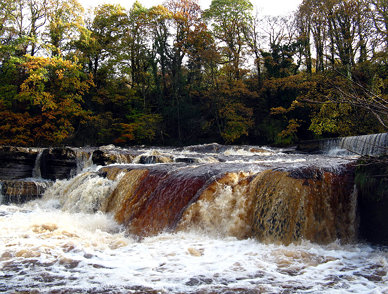 Richmond Falls, Swollen River, Autumn