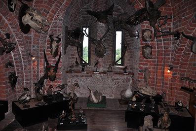 Pomeranian Dukes' Castle in Darłów 10