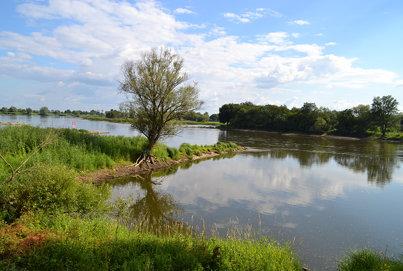 aan de Oder