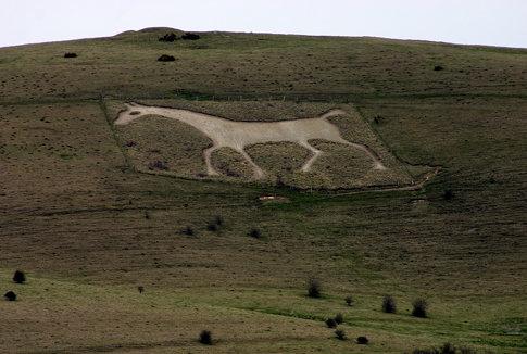 White Chalk Horse