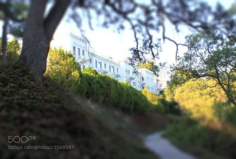 Livadiysky palace