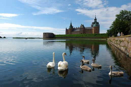 Kalmar slott och svanar