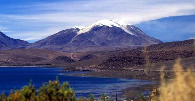 Patate Théophile - Las Vicuñas National Reserve