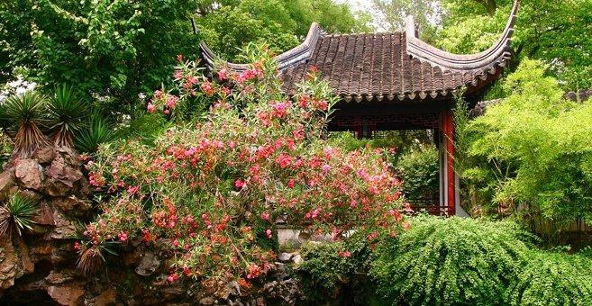 Suzhou - Lion Grove Garden