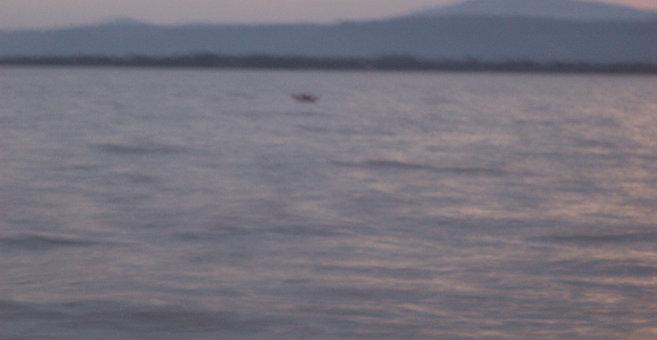 Bukasa - Aydar Lake