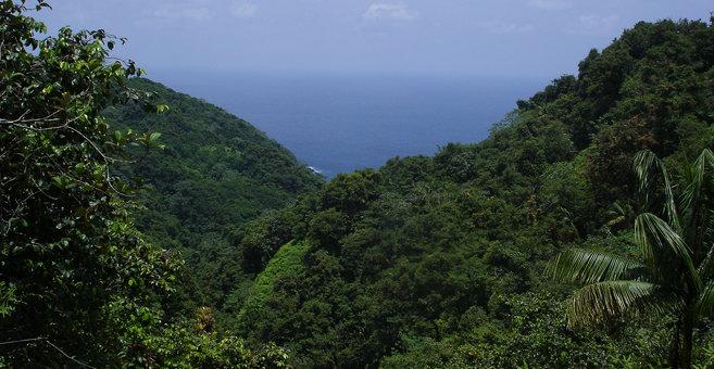 Mal País - Kókusz-sziget