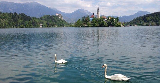 Bled - Jezioro Bled