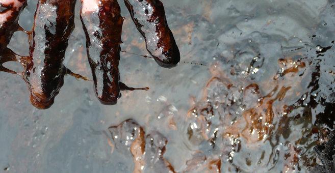Onya - Нигер (река)