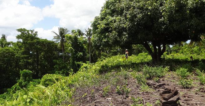 Satupa`itea - Pulemelei Mound