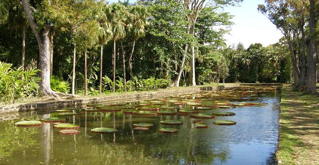 Maison Blanche - Sir Seewoosagur Ramgoolam Botanical Garden
