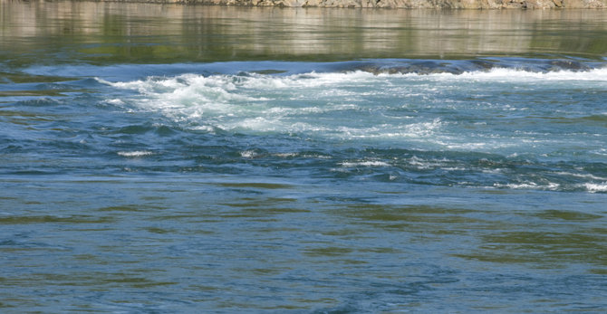 Old Sow whirlpool in Indian Island - Advisor Travel