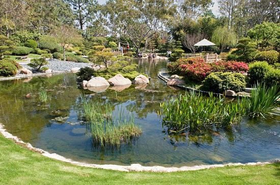 Earl Burns Miller Japanese Garden In Los Altos Advisor Travel
