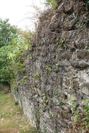 Годлик (крепость)