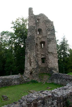 Tower, ruins of Dagstuhl Castle
