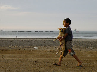 Un niño pasea su perro