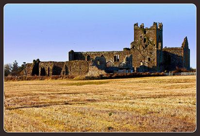 Dunbrody Abbey
