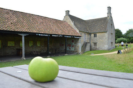 An apple at Woolsthorpe Manor
