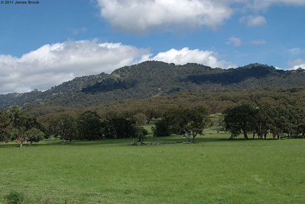 Ardglen to Murrurundi