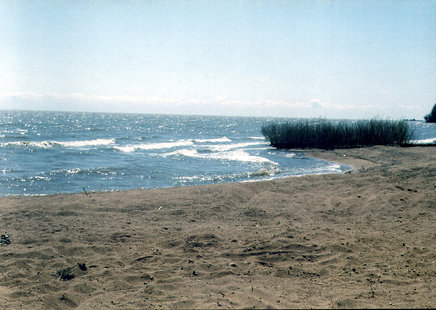 Ханка (озеро)