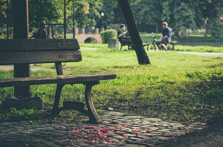 Park Róż