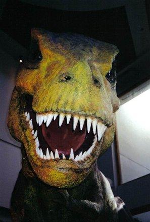 Jurassic Park Ride T-Rex @ Universal Studios Islands of Adventure, Orlando, Florida