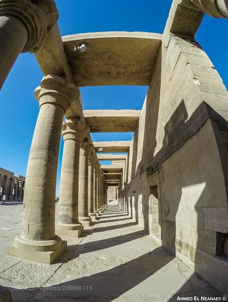 Pillars from Philae Temple