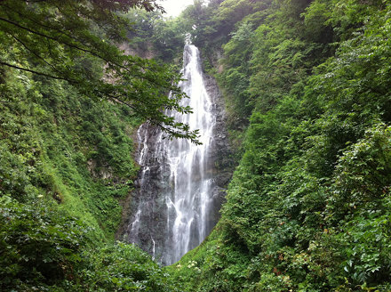 Monday : Black Bear Waterfall, Shirakami