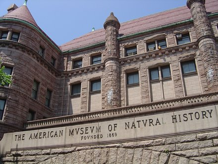 American Musuem of Natural History (NYC)