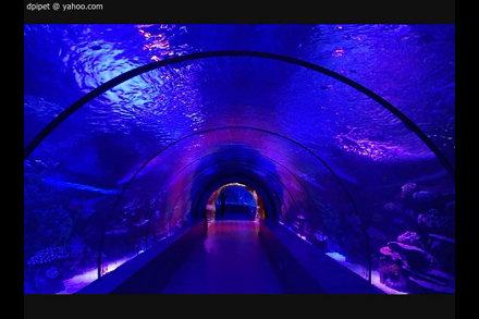 l'aquarium d'Antalya