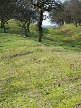 Antonine Wall, Seabegs Wood #1