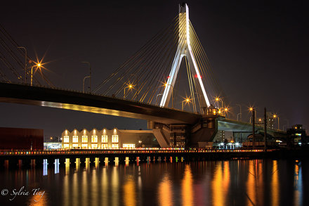 Aomori Bay Bridge at night