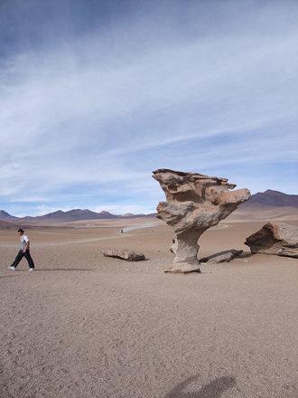 アタカマ砂漠をゆく
