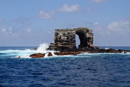 Darwin Arch