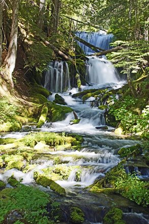 073116_44_Big Spring Creek-NF23, WA