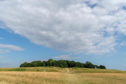 Badbury Rings Horizon