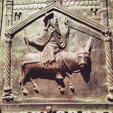 #happy #donkey #asino #burro #musso #sanzeno #verona #italy